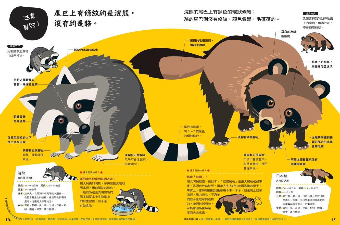 哪個是哪個?動物比較圖鑑(新版)
