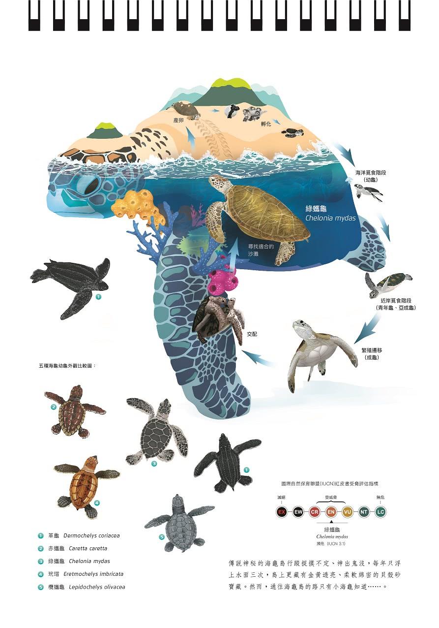 2022年海洋保育桌曆-小浮游的遠行
