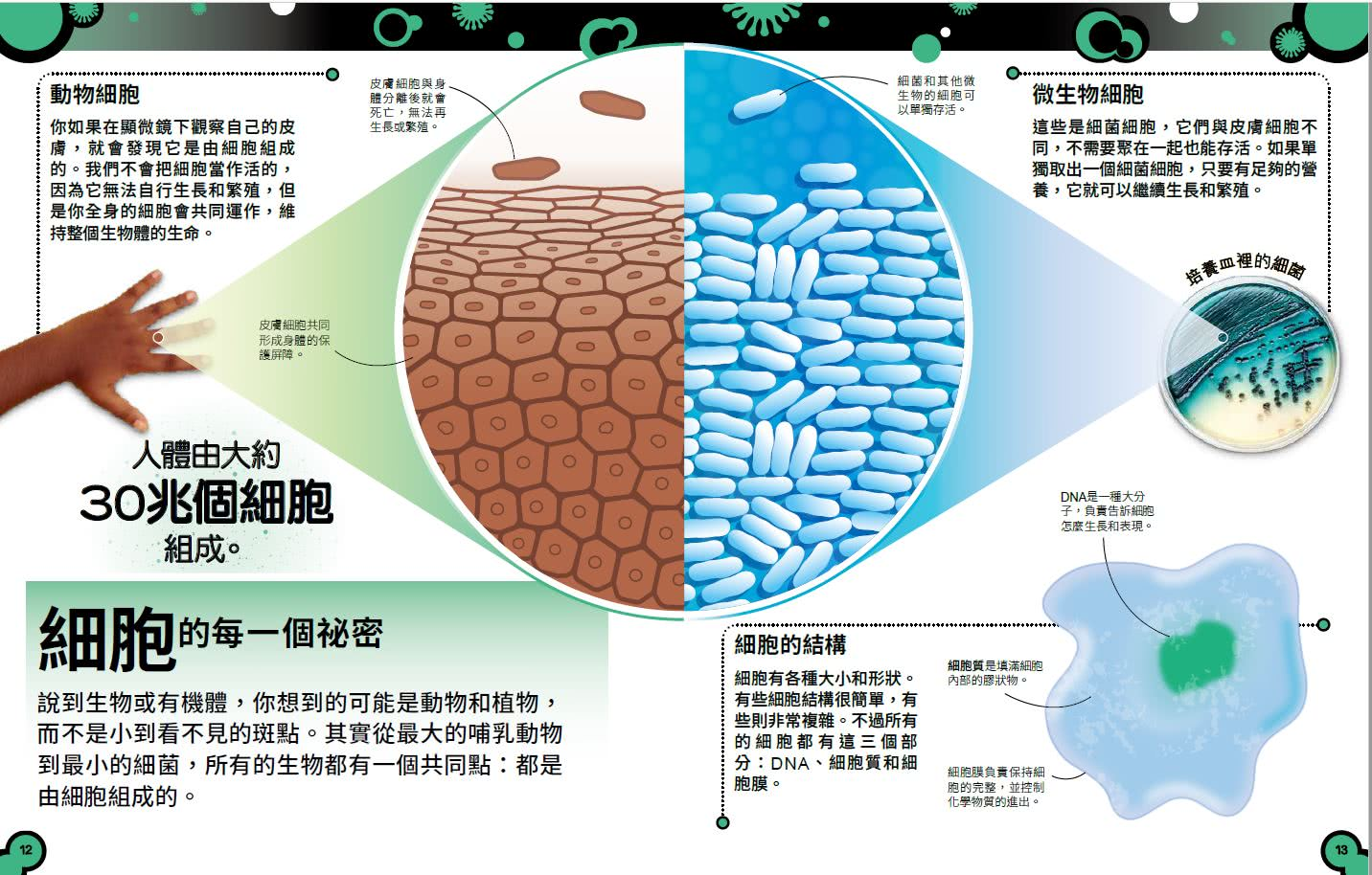 小心 這本書有細菌!:認識細菌、病毒和真菌的強大微生物王國